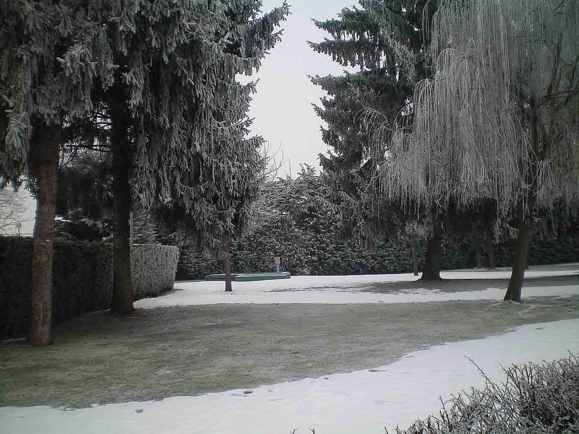 Una strana neve