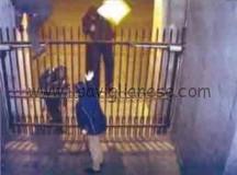 Arrestati quattro ladri di rame che scoperchiavano le tombe