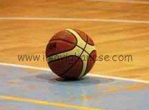 Amatori Basket: «Gosio favorisce i Gators»