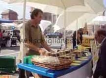 I commercianti racconigesi: «Mercato in piazza castello»
