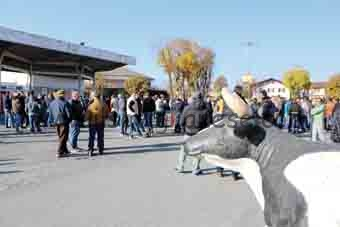 Latte protesta Biraghi 2